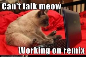 cattalknow