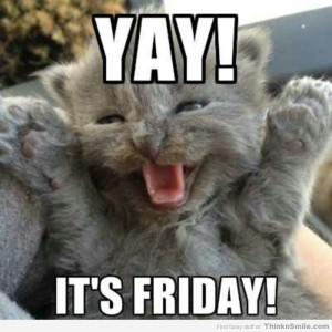 yay_its_friday_kitten_meme